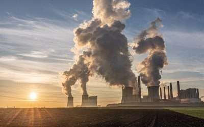 Adapting to the climate crisis — is your business prepared?